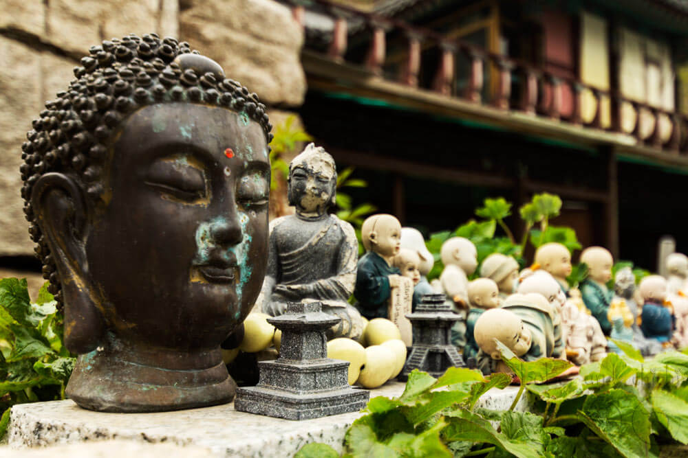 siddhartha reflection by megan bergland Reflection on siddhartha essay sample the spiritual ideas of buddhism and hinduism are very interesting but often hard to grasp in the novel siddhartha, by hermann hesse, these ideas are the basis for many likes and dislikes.